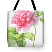 Japanese Tree Peony Tote Bag by Pierre Joseph Redoute