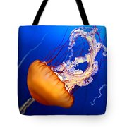 Jelly #2 Tote Bag by Nikolyn McDonald