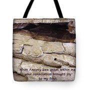 Joy To My Soul Tote Bag by Sara  Raber