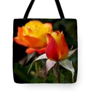 Judy Garland Rose Tote Bag by Rona Black
