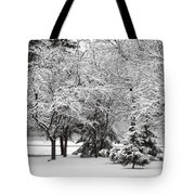 Just After A Snowfall Tote Bag by Mary Machare