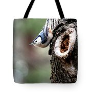 Just Hanging Around Tote Bag by Kathy  White