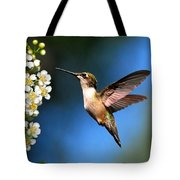 Just Looking Tote Bag by Christina Rollo