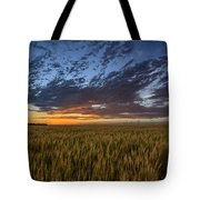 Kansas Color Tote Bag by Thomas Zimmerman