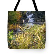 Kent Falls Tote Bag by Bill Wakeley