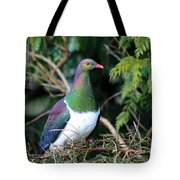 Kerehu - New Zealand Wood Pigeon Tote Bag by Amanda Stadther