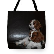 King Charles Puppies Tote Bag by Dale Powell