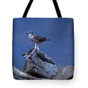 King Of The Hill Tote Bag by Skip Willits