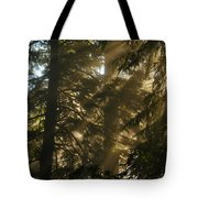 Knowing The Way Tote Bag by Jeff Swan