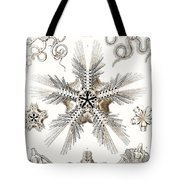 Kunstformen Der Natur Tote Bag by Ernst Haeckel