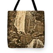 La Coca Falls El Yunque National Rainforest Puerto Rico Prints Rustic Tote Bag by Shawn O'Brien