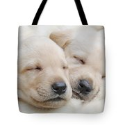 Labrador Retriever Puppies Sleeping  Tote Bag by Jennie Marie Schell
