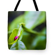 Ladybug Cup Tote Bag by Marvin Spates