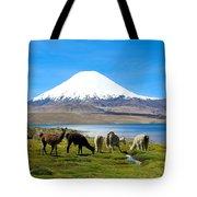 Lake Chungara Chilean Andes Tote Bag by Kurt Van Wagner