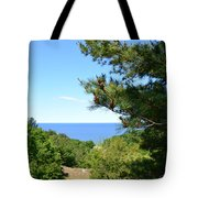 Lake Michigan From The Top Of The Dune Tote Bag by Michelle Calkins