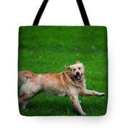 Lalala Happy Sunday. Golden Retriever Tote Bag by Jenny Rainbow