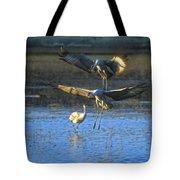 Landing Sandhill Cranes Tote Bag by Steven Ralser