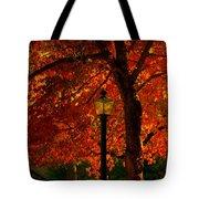 Lantern In Autumn Tote Bag by Susanne Van Hulst