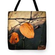 Last Leaves Tote Bag by Taylan Soyturk