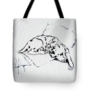 Lazy Day Tote Bag by Jacki McGovern