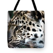 Leopard Tote Bag by John Rizzuto