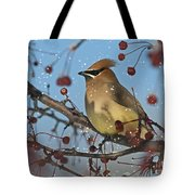 Let It Snow Let It Snow Let It... Tote Bag by Nina Stavlund