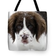 Lets Play Tote Bag by Mike  Dawson