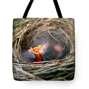 Life in the Nest Tote Bag by Christina Rollo