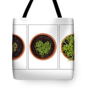 Life Of Cress On White Tote Bag by Anne Gilbert