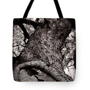 Lightning Tree  Tote Bag by Trish Mistric