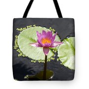 Lilly Lake Tote Bag by Carey Chen