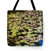 Lilly Pads Tote Bag by David Pyatt
