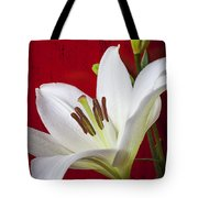 Lily against red wall Tote Bag by Garry Gay