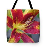 Lily In My Patio Tote Bag by Sonali Gangane