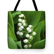 Lily-of-the-valley  Tote Bag by Elena Elisseeva