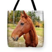 Limerick Tote Bag by Mike Breau