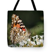 Little Creature Tote Bag by Juergen Roth