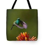 Little Hedgehopper Tote Bag by Heiko Koehrer-Wagner