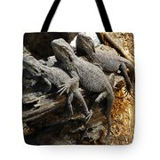 Lizards Tote Bag by Les Cunliffe