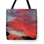 Lobster Sky Tote Bag by Barbara Griffin