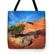 Lone Juniper Tote Bag by Inge Johnsson