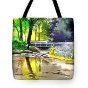 Long Time No See Tote Bag by Anil Nene