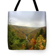 Looking Downstream At Blackwater River Gorge In Fall Tote Bag by Dan Friend