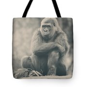 Looking So Sad Tote Bag by Laurie Search