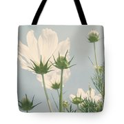 Looking Up Tote Bag by Kim Hojnacki
