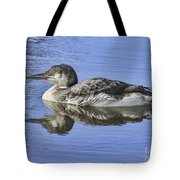 Loon On Vacation Tote Bag by Deborah Benoit