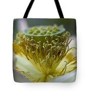 Lotus Detail Tote Bag by Heiko Koehrer-Wagner