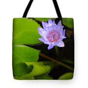 Lotus Flower And Lily Pad Tote Bag by Adam Romanowicz
