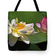 Lotus Pink -- Lotus White And Gold Tote Bag by Byron Varvarigos