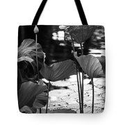 Lotuses In The Pond I. Black And White Tote Bag by Jenny Rainbow